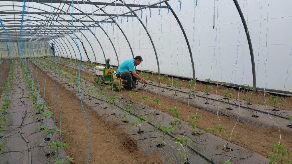 Robot agricole serre Station expérimentale Bretagne Sud