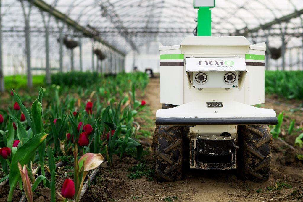 Pénisson Horticulteur Naïo Technologies 3